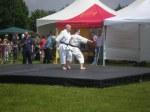 Kiso kumite - reverse elbow