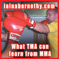 What Traditional Martial Artists can learn from MMA
