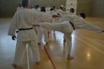 Zanshin Kai Shotokan Karate Glasgow