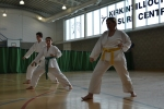 Zanshin Kai - Shotokan Karate Glasgow