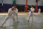 Clinch, break and strike